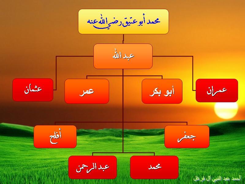 أنساب سلالة أبو بكر الصديق رضي الله عنه وأرضاه عالم حواء